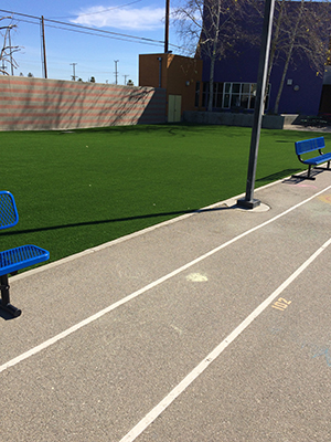 Genesis_Artificial_Turf_5_Sports-Play_Field_Multiplay_Sport