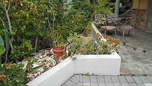 Genesis_GardenWall_12